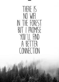 Motiv #018 - forest