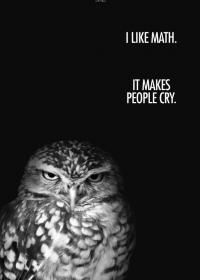 Motiv #023 - grumpy-owl