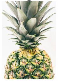 Motiv #163 - ananas-gross